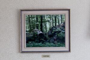 Photograph. / 40 x 50 cm